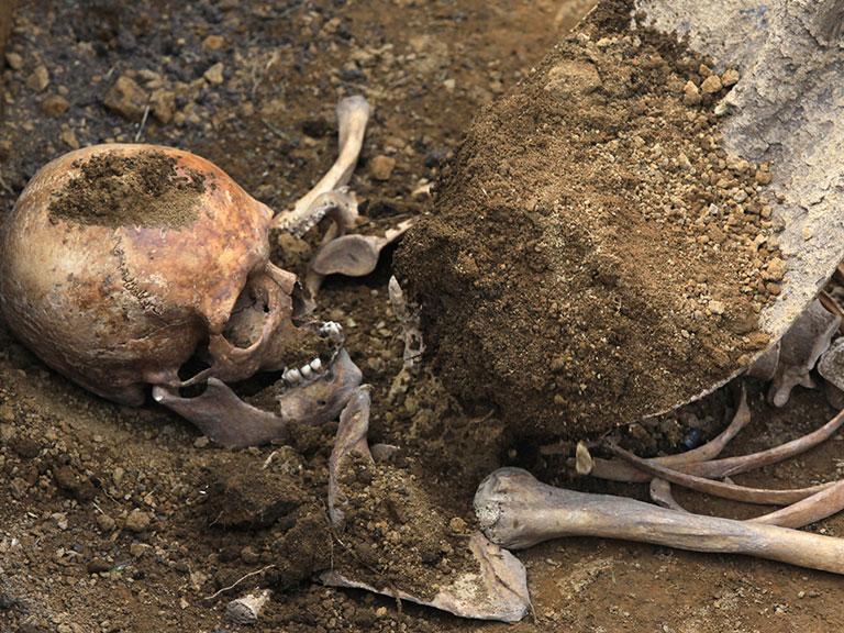 Наокраине саратовской деревни найдены два человеческих скелета