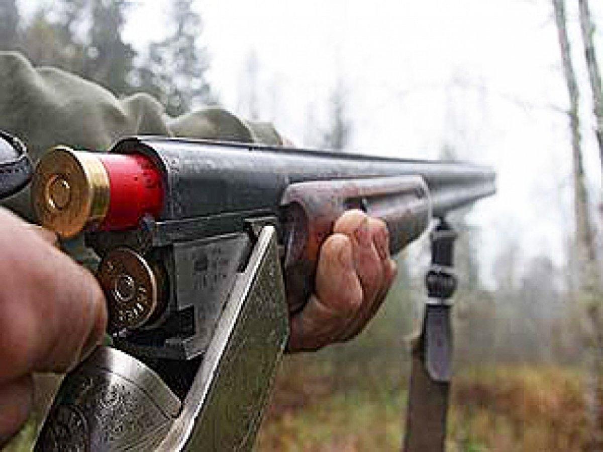 Браконьер осужден застрельбу поегерю всаратовском лесу