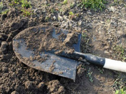 Девушку насмерть сбили натрассе изакопали взаброшенной могиле