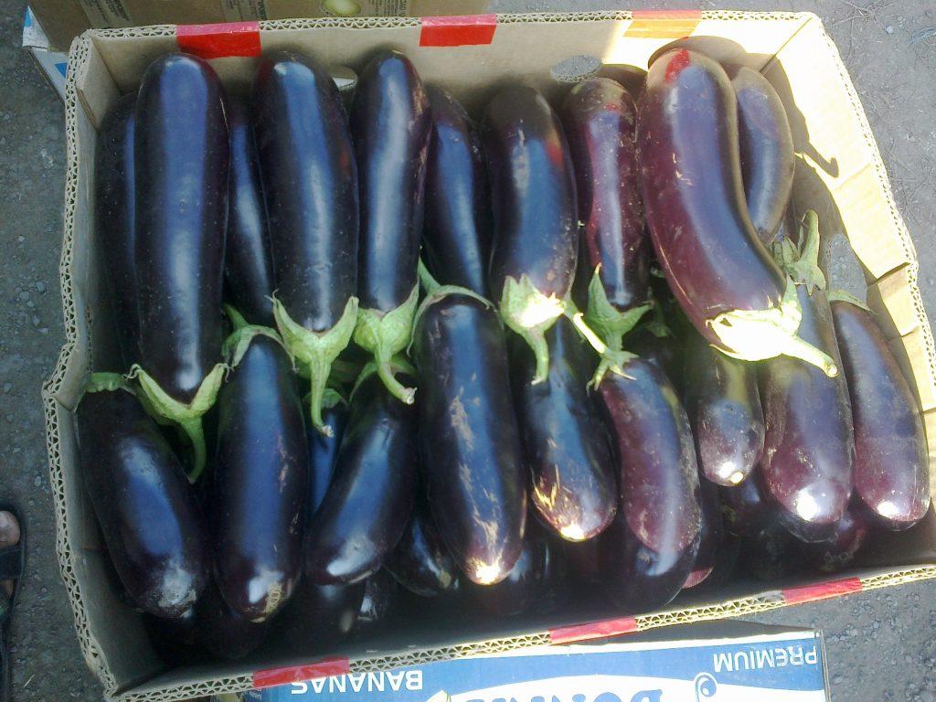 ВСаратове уничтожены изъятые нарынке 1,2 тонны томатов