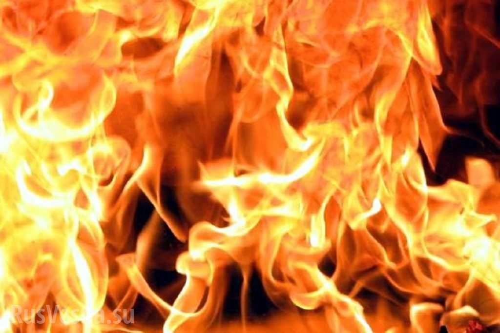 ВСаратове горела вывеска «Цветущего сада»
